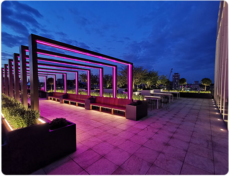 image of an outside garden space with lighting by Total Lighting